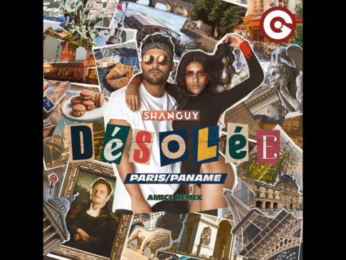 Shanguy - Desolee (Amice Remix) [2020]