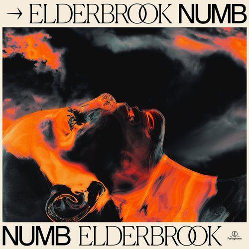 Elderbrook - Numb (Elderbrook Vip) [2020]