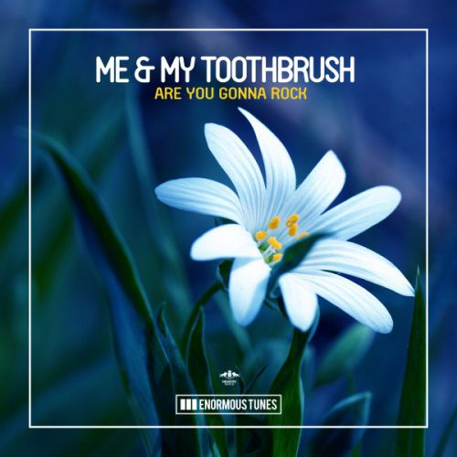 Me & My Toothbrush - Are You Gonna Rock (Extended Mix) [2020]