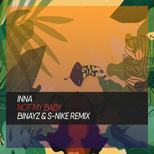 Inna - Not My Baby (Binayz & S-Nike Remix) [2020]