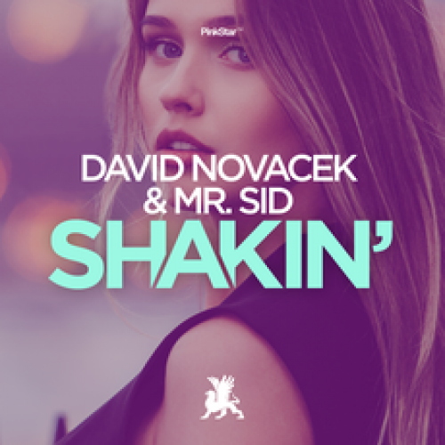 David Novacek & Mr. Sid - Shakin' (Original Club Mix) [2020]