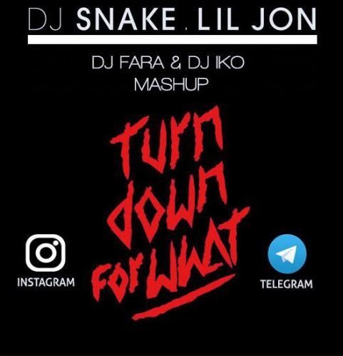 DJ Snake feat Lil Jon & Vincent & Diaz - Turn Down For What (DJ Fara & DJ Iko Mash Up) [2020]