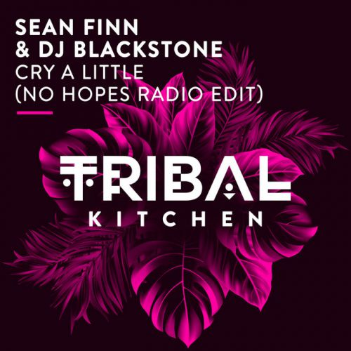 Sean Finn & DJ Blackstone - Cry A Little (No Hopes Remix) [2020]