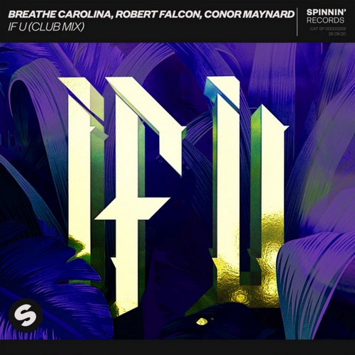 Breathe Carolina & Robert Falcon & Conor Maynard - If U (Club Mix) [2020]