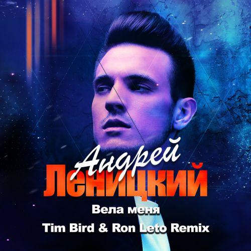 Андрей Леницкий - Вела меня (Tim Bird & Ron Leto Remix) [2020]