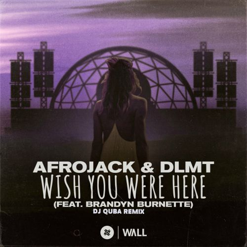 Afrojack, Dlmt feat. Brandyn Burnette - Wish You Were Here (DJ Quba Remix) [2020]